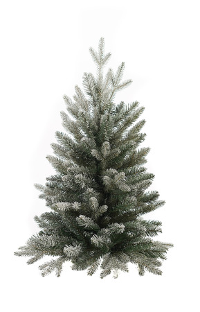 Елка VISP SNOWY 76 см, литая 100% хвоя+ПВХ, Holland Trees